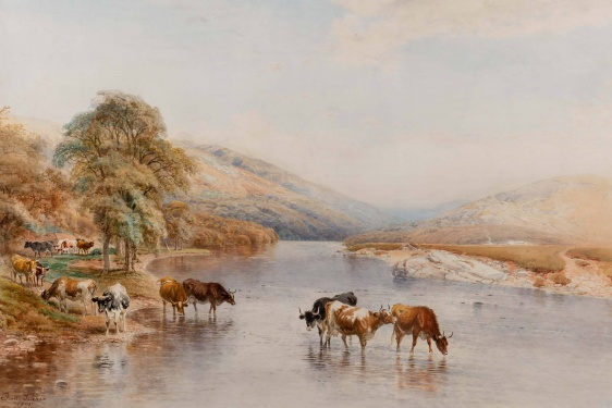 Frederick Tucker  (b.1860-1935) 'Highland cattle watering'